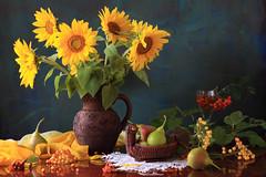We Breathe The Sun (panga_ua) Tags: webreathethesun breathe breath iam sunflowers stunningph