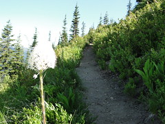 Crystal Peak trail.