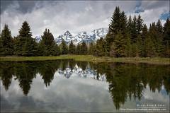 Schwabacher's Landing - Grand Teton National Park (Anna & Oskar) Tags: park usa utah grand moose national beavercreek wyoming teton estadosunidos