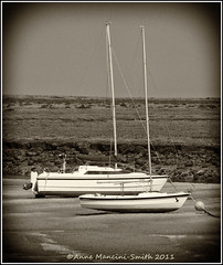 Waiting for high tide (Anne Mancini-Smith) Tags: boats ships norfolk lowtide masts wellsnextthesea fujifilmfinepixs2950