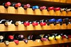 Wine Rack, The Gibbon Bridge, Chipping (D7E_5019) (Dave_Gaskell) Tags: bottle wine bottles shelf rows winebottles chipping gibbonbridge davegaskell