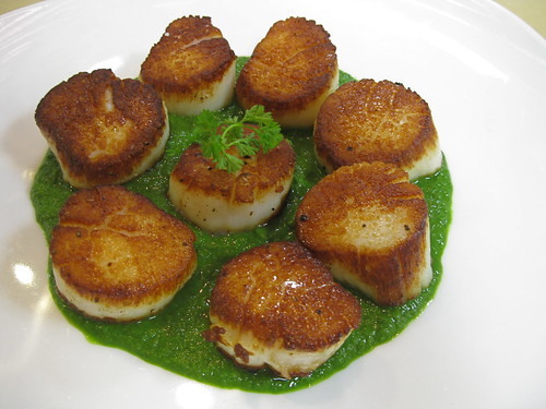 Seared Scallops w Parsley Coulis