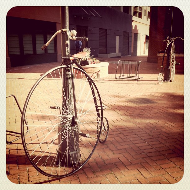 Day 4 : Penny farthing sighting in New Haven.