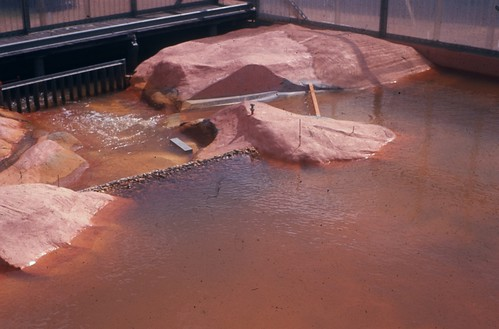 1966-ca - Model of Ord River Main Dam - PWD hydraulics lab Perth - KHS-2011-46-cw-PD
