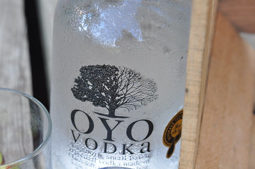 Bottle of OYO Vodka