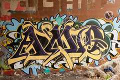 (ExcuseMySarcasm) Tags: urban usa streetart art graffiti michigan unitedstatesofamerica detroit easternmarket amo dissed marred guerrillaart excusemysarcasm