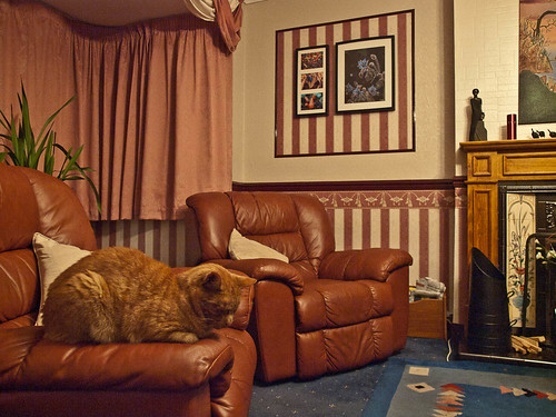 1000/575: 29 Sept 2011: Find the cat by nmonckton