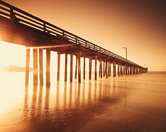 Light Leakage Under the Cayucos Pier (Lila Limited) Tags: california beach bay pier shadows le pilings day3 cayucos weee monochromaticcolour nopeopleinthisonewhichisoddbecauseialwaysgetwavedatwhileshootingheremaybetheythinktheyknowme ialwayswavebackjustincase howthefdidievermakeitthroughthat365 likewhaaa