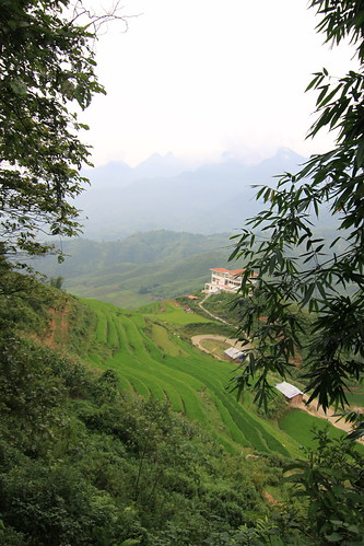 IMG_9136, Terraced paddy fields