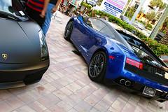 Matte Black Gallardo & LP550-2 Balboni (MikeTroy Photography) Tags: new blue black cars car miami exotic lamborghini matte exoticcars lambo 2011 sunnyisles matteblack balboni prestigeimports lp5502