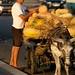 Comprando melão na ponte sobre o Nilo