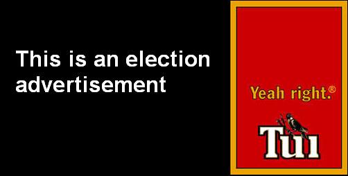 tui-electionad