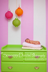 Welcoming our New Addition (Susanne Davis Photography) Tags: portrait baby green pose newborn dresser