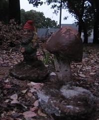 Rescued Gnome and Mushroom (Unfortunate Bystander) Tags: mushroom concrete gnome whimsy disturbing yardart