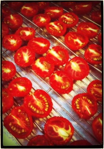 ドライトマト #instan_p