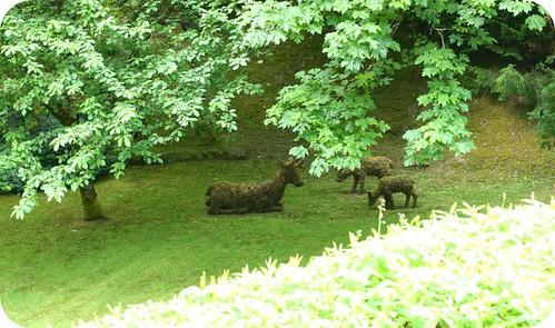 Butchardt Gardens 5