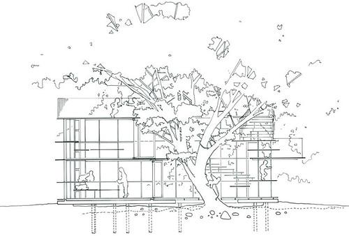 tezuka architects fuji kindergarten ring around tree drawings 01