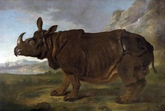 Jean-Baptiste Oudry: French, 1686-1755 (John McNab) Tags: italy india france celebrity netherlands germany painting french europe poland painter wikipedia safe rhinoceros rococo deceased 1749 eighteenthcentury indianrhinoceros jeanbaptisteoudry latebaroque johnmcnab claralerhinoceros