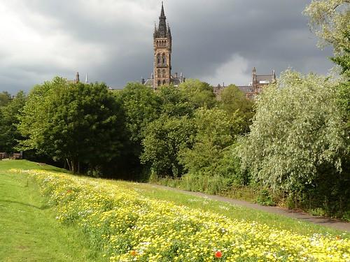 View of Glasgow University