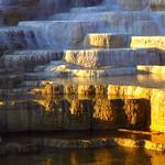 IMG_8321 Travertine Terraces, Mammoth Hot Springs, Yellowstone National Park