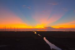 (Digital_trance) Tags: sunset 20d canon landscape landscapes 300d canon300d dusk canon20d taiwan sigma windmills canoneos20d   canoneos300d wetland lightrays  raysoflight     gaomei   40d   canoneos40d canon40d  gaomeiwetland 5dmarkii 5d2  5dii canon5dmarkii eos5dmarkii canon5d2 beautyoftaiwan