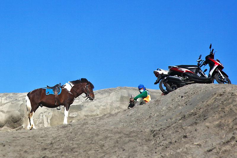 Horseman IMG_0316-w