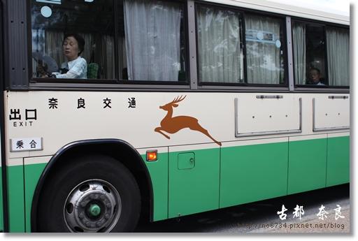 20110711_4thDay Nara _0538 f