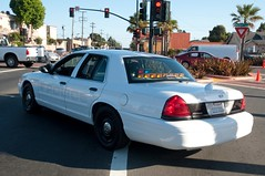 San Pablo Police Subdued Graphics Back (rocketdogphoto) Tags: california usa policecar sanpablo fordcrownvictoria contracostacounty sppd sanpablopolicedepartment