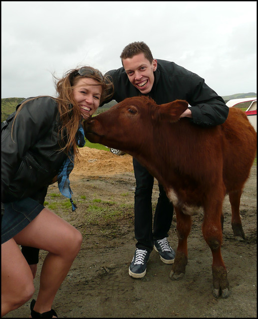 Isabella and me with the cows ^^