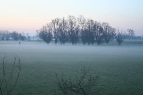 Poekebeek ochtenddauw