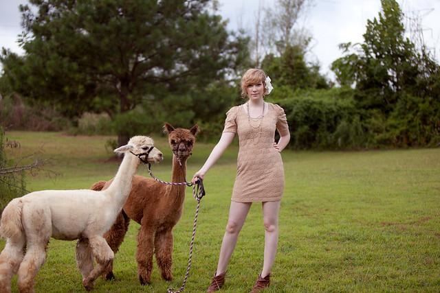 Kristen-alpacas-078-2-Edit