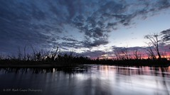 Reaching For The Skys (Mark-Cooper-Photography) Tags: forest sunrise canon fingers australia creepy filter nsw outback 2711 hay plains hitech weir density neutral gradual efs1022mm gnd 550d t2i hayplains haynsw eos550d markcooperphotography