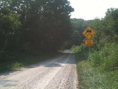 Slimy road!