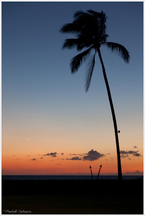 First Maui