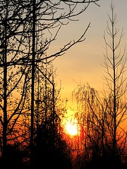 IMG_4607 (leumastorga) Tags: chile santiago sunset puestadesol