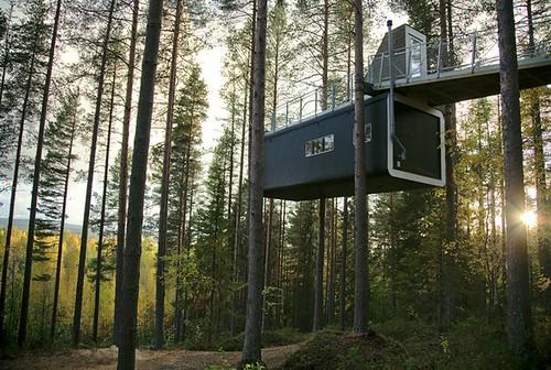 tree hotel4
