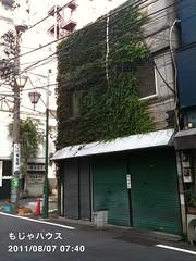 朝散歩(2011/8/7 7:35-7:55): もじゃハウス