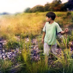 328/365 (brandonhuang) Tags: trees light boy sky color tree colors field grass leaves canon 50mm leaf kid nikon warm child 12 nikkor ais f12 brandonhuang