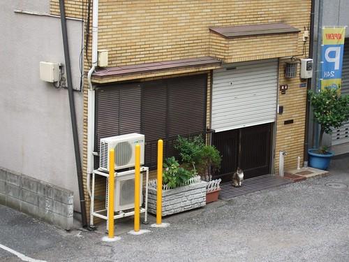 0060 - 07.07.2007 - Vistas ventana Hotel Asakusa