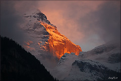 Swiss Alps on Fire - The Jungfrau Seen at Sunset [Explored] (SunyFLx4) Tags: travel sunset snow mountains alps fire switzerland europe unesco worldheritagesite lauterbrunnen jungfrau swissalps greatphotographers bernesealps rockpaper absolutelystunningscapes naturethroughthelens flickrclassique mygearandme mygearandmepremium mygearandmebronze mygearandmesilver mygearandmegold mygearandmeplatinum mygearandmediamond greatestphotographers stunningphotogpin best4gpin