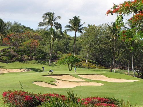 Maui Chiaki 549