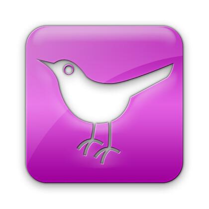 twitter-bird2-square-webtreatsetc