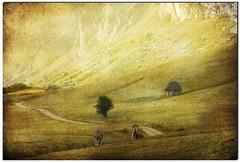 "Pastando en ""El Paraiso"" II (Geli-L) Tags: naturaleza textura nature poetry asturias paisaje soe somiedo valledelago naturepoetry fz28"