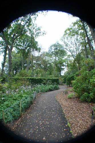 Explorers Garden, Pitlochry