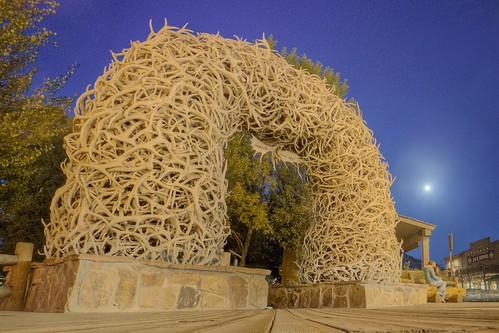 Arch of Elk Antlers