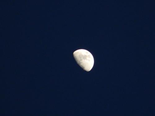Luna al atardecer by Carlos Navarro C.