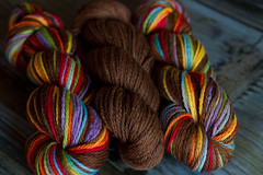 'choco rainbow' on Organic Merino- 3 skein lot