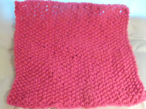 Seed Stitch Dish Cloth (10/365)