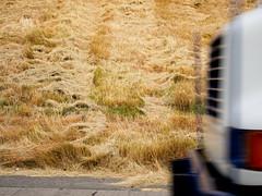 Beacon Hill (Blinking Charlie) Tags: seattle usa blur traffic i5 lawn freeway washingtonstate beaconhill 2011 tumblr mowngrass canonpowershots95 blinkingcharlie bwtumblr