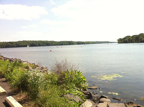 Steelman swim course (part of 1.5mi loop)